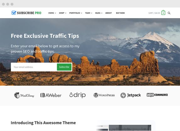 Subscribe WordPress Multi-Purpose Theme - Happy Themes