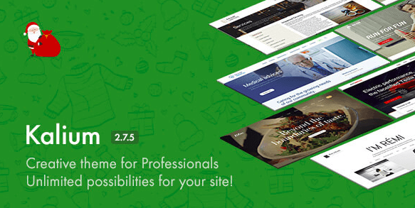 Kalium v2.7.5 - Creative Theme for Professionals
